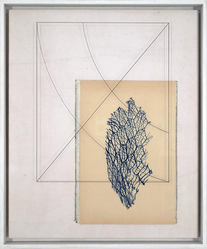 Corpi fragili , 2014 Tecnica mista su tavola, cm 71,8 x 60 x 7,8