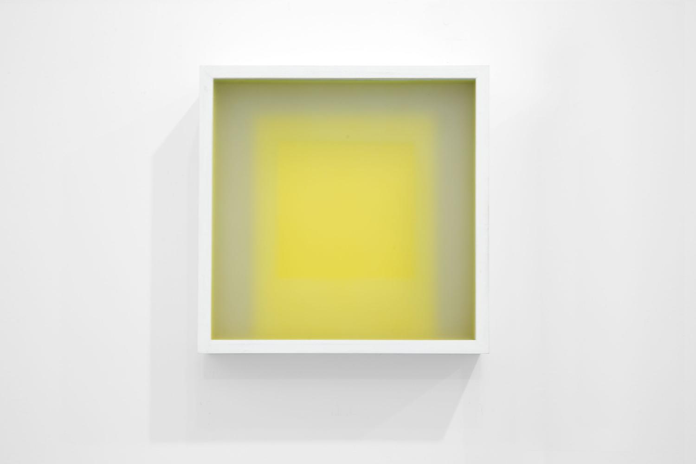 Corpi fragili,  2015 Vetro, carta, legno, cm 24,5 x 24,8