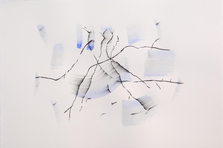 Marisa Albanese,  Corpi d'acqua/10 , 2016, carboncino e acquerelli su carta Arches Aquarelle 100% cotone, cm 56x38
