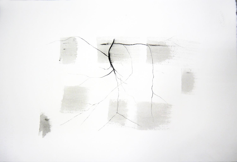 Marisa Albanese, Corpi d'acqua/7 ,2016, carboncino e acquerello su carta Arches, cm 56x38