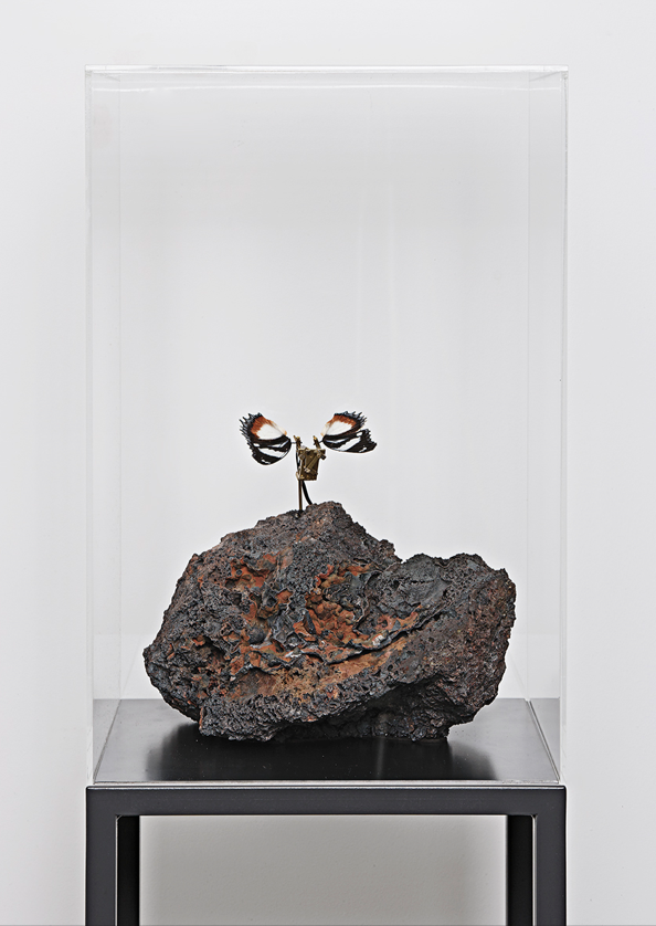 A Butterfly Dream , 2016, lave stone, butterfly, steel, brass, electronic device, motor, transparent cover cm 140x40x40 (with cover cm 204x40x40; pedestal cm 100)