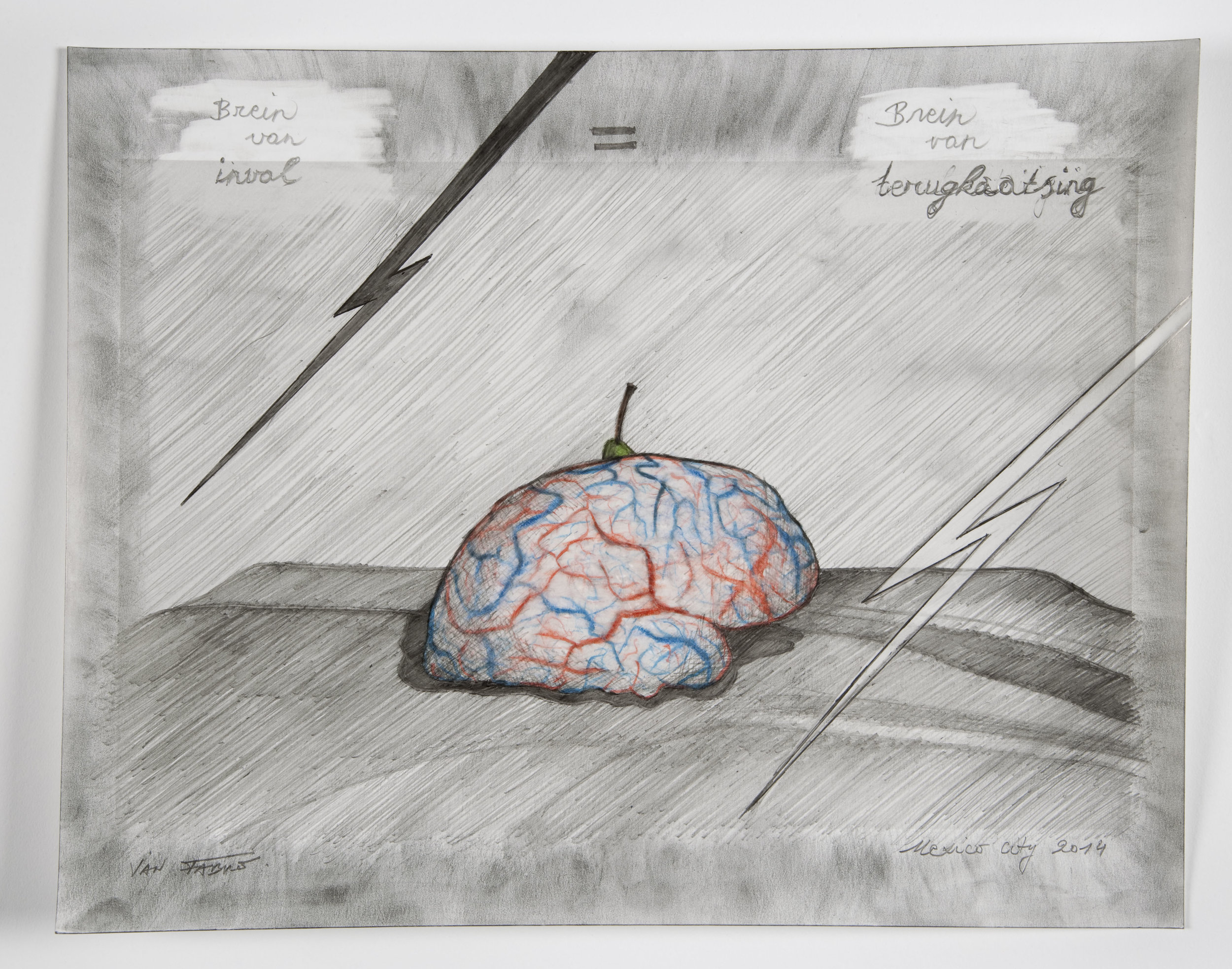 Brain of incidence = brain of reflection , 2014,HB pencil and colour pencil on photographic paper,24 x 30,5 cm Ph. Pat Verbruggen ©Angelos bvba