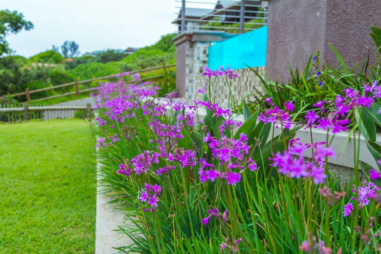 Fertilizing South African Gardens