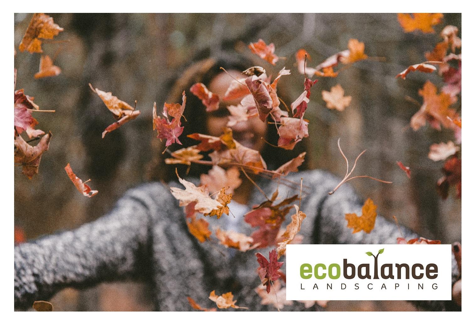 Autumn Blog 2019.jpg