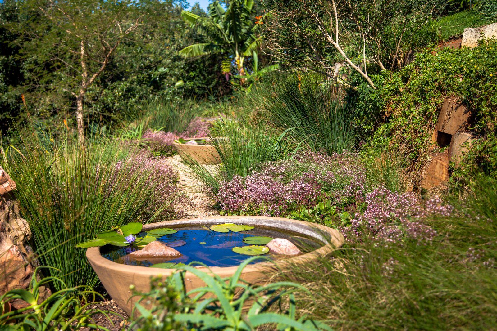 Simbith Garden Emboya11.jpeg