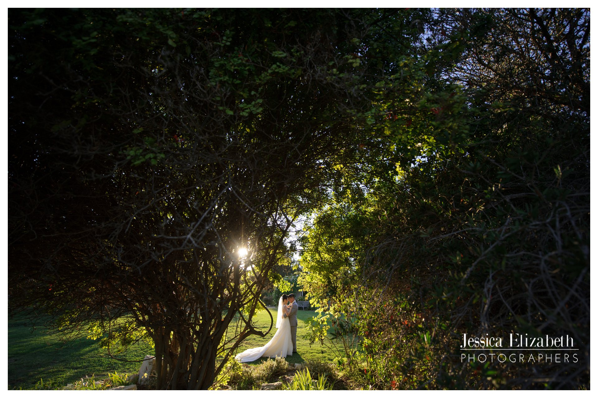 30-South-Coast-Botanic-Garden-Palos-Verdes-Wedding-Photography-by-Jessica-Elizabeth1.jpg