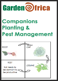 How-to leaflet on companion planting & pest management