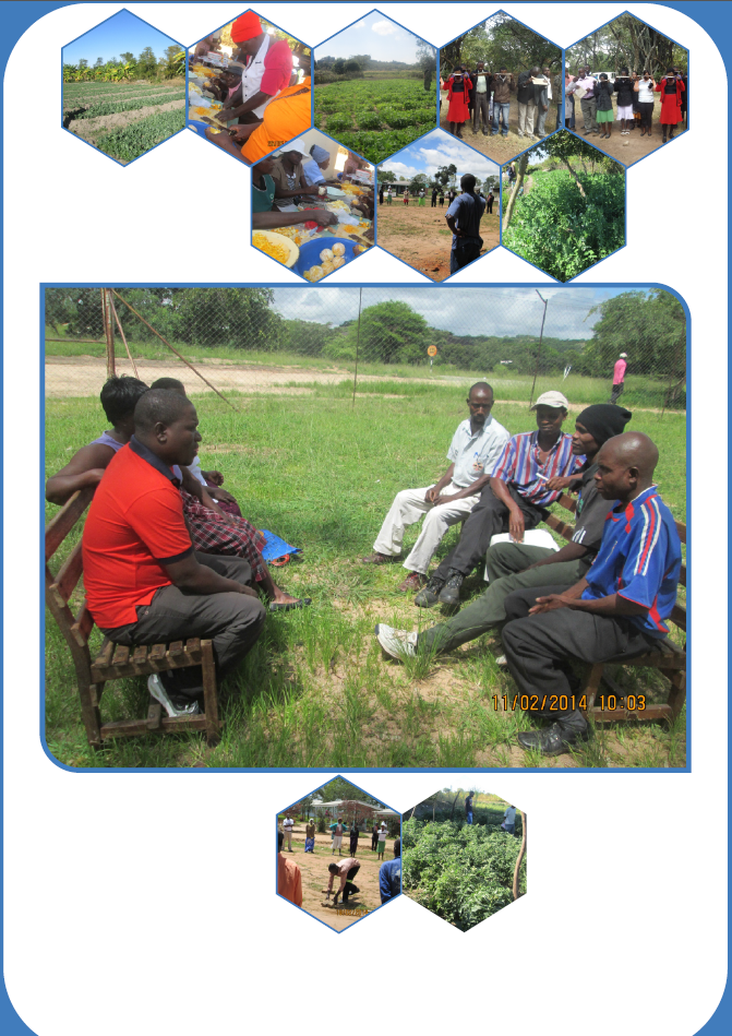 Shona language manual for organic farmers, developed & used on GardenAfrica's organic farming and market development partnership in Zimbabwe.