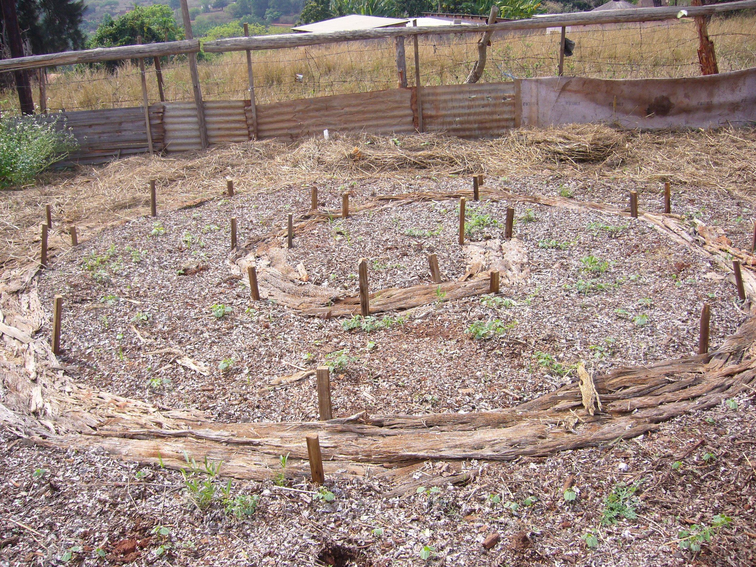 By protecting and enhancing soils, this plot ...