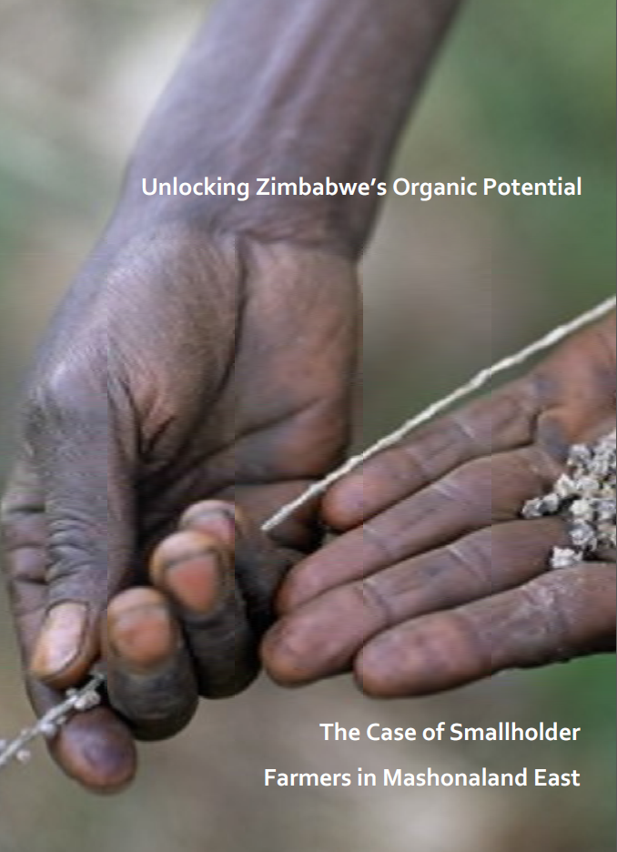 GardenAfrica lessons on strengthening organic market potential in Zimbabwe.