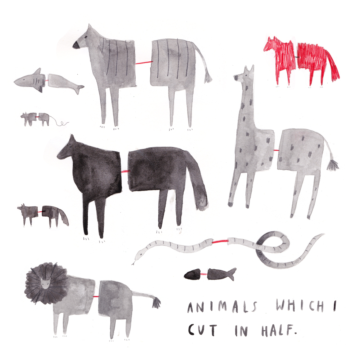 animalswhichicutinhalf.jpg