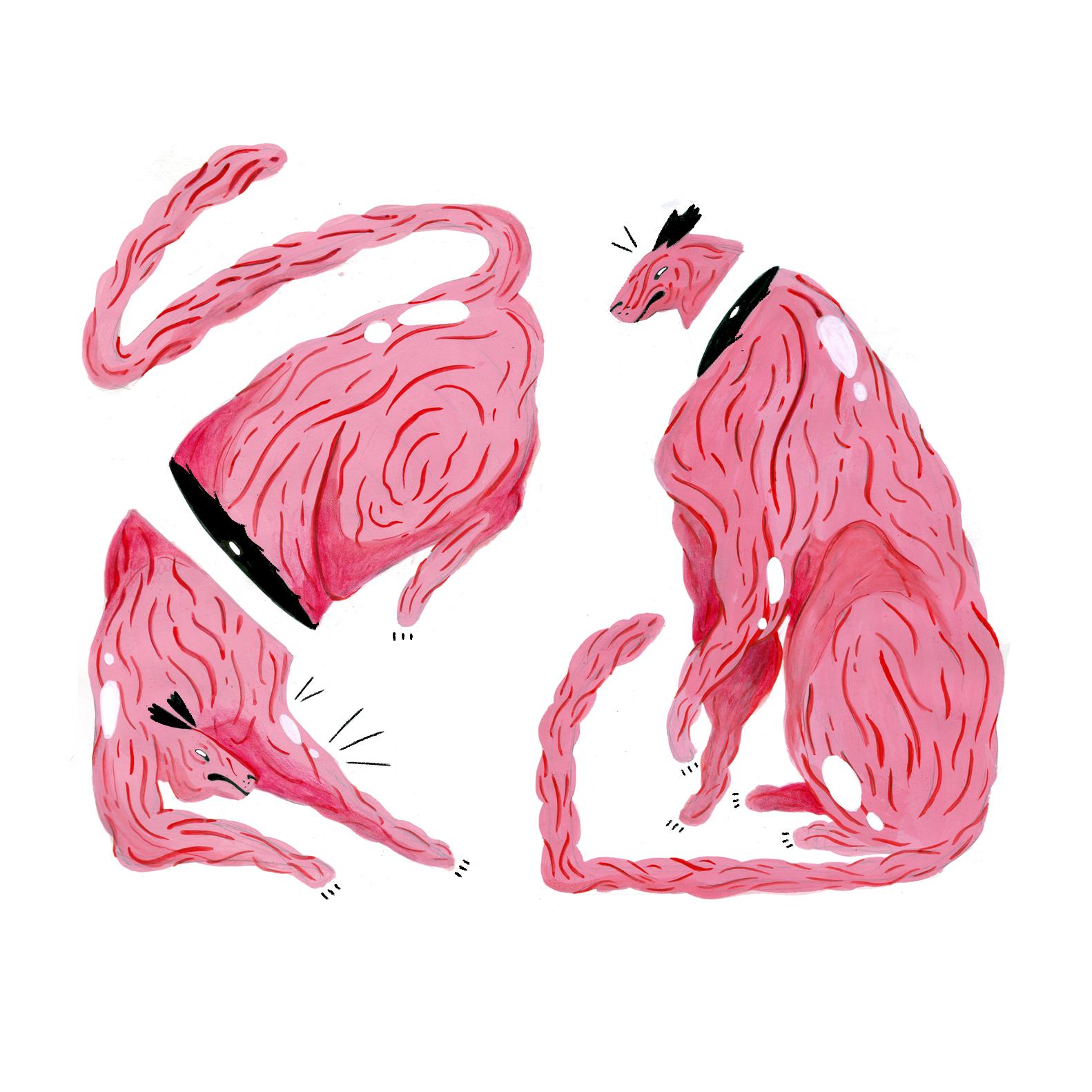 fleshcats.jpg