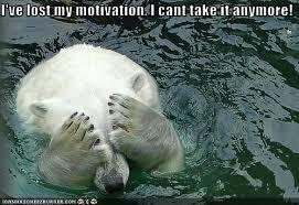 ive lost my motivation.jpeg