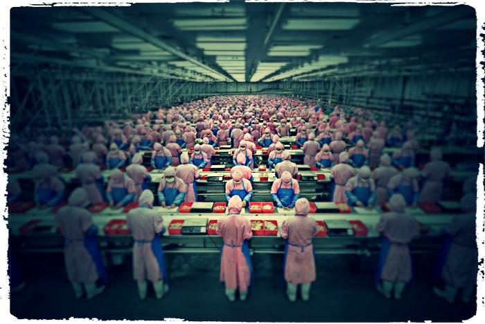 factory workers not living their bucket list life_2b.jpg