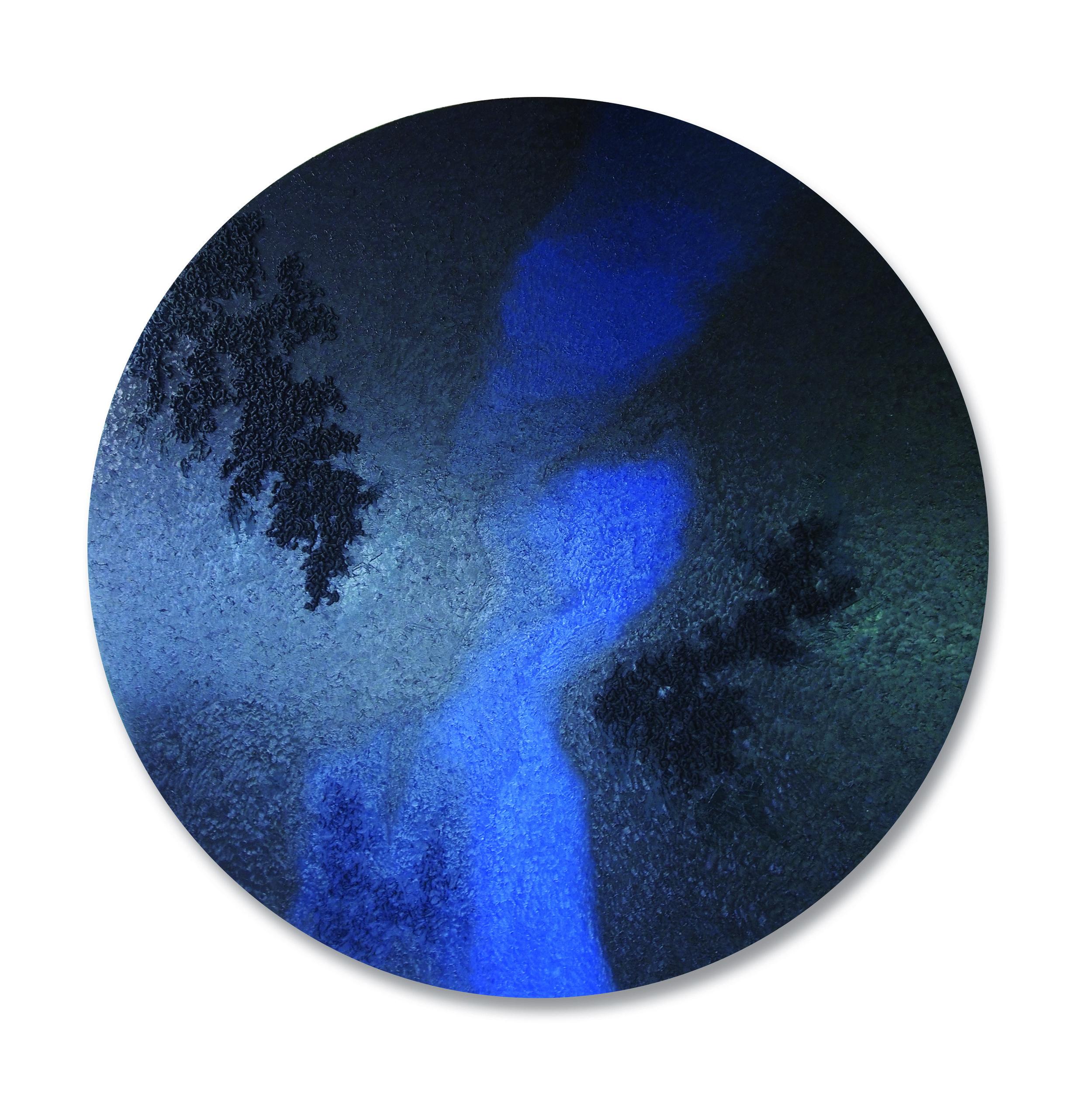 Untitled (Metamorphic Histories) V