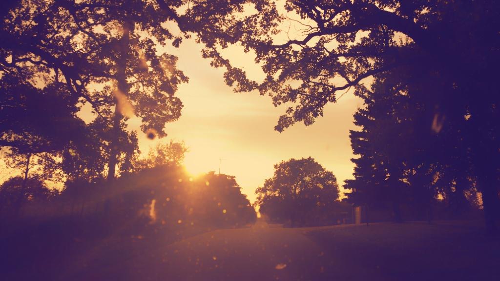 Sunset. Kettle Moraine Scenic Dr. La Grange, WI