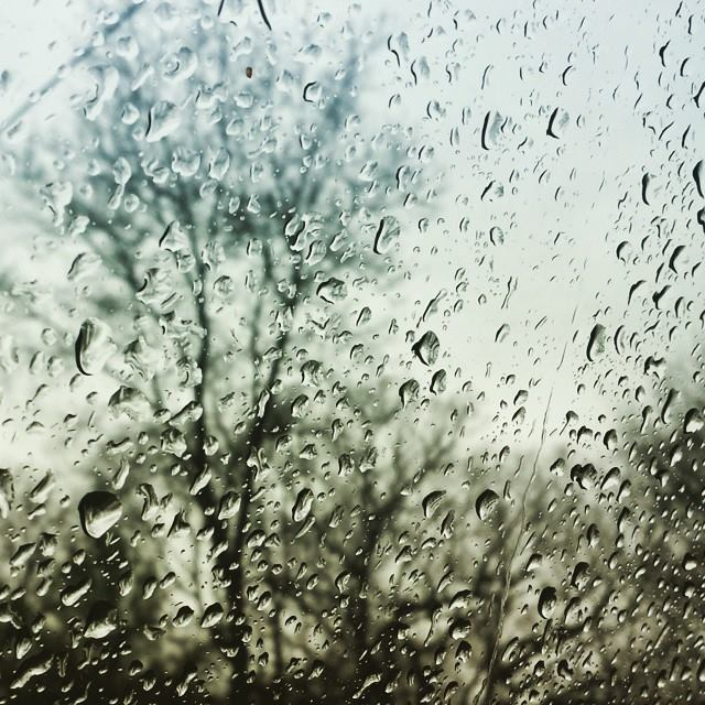 Spring Rain: Whitewater, WI
