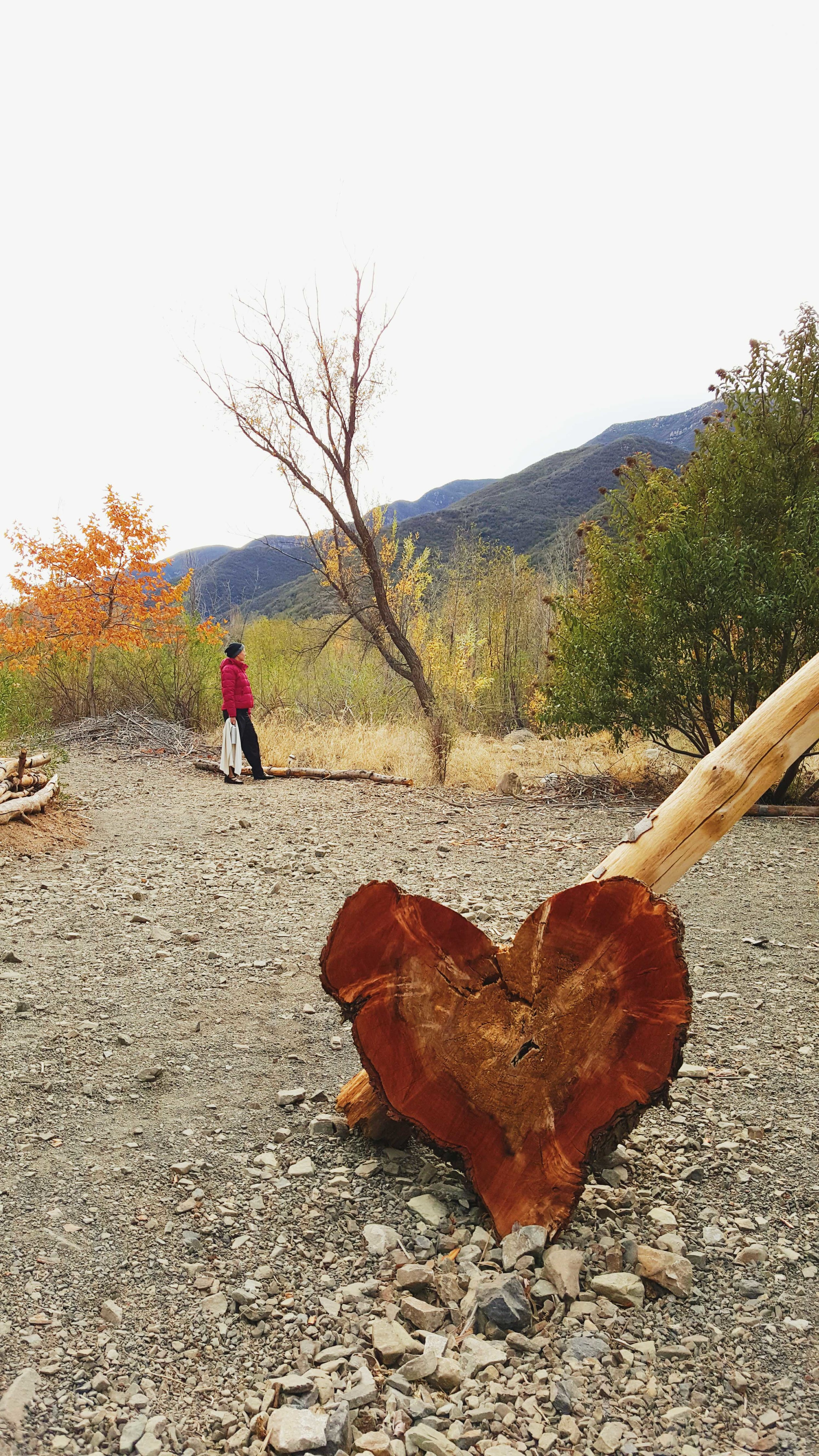 Wood-carved heart on the trail to the hot springs of Ojai, CA