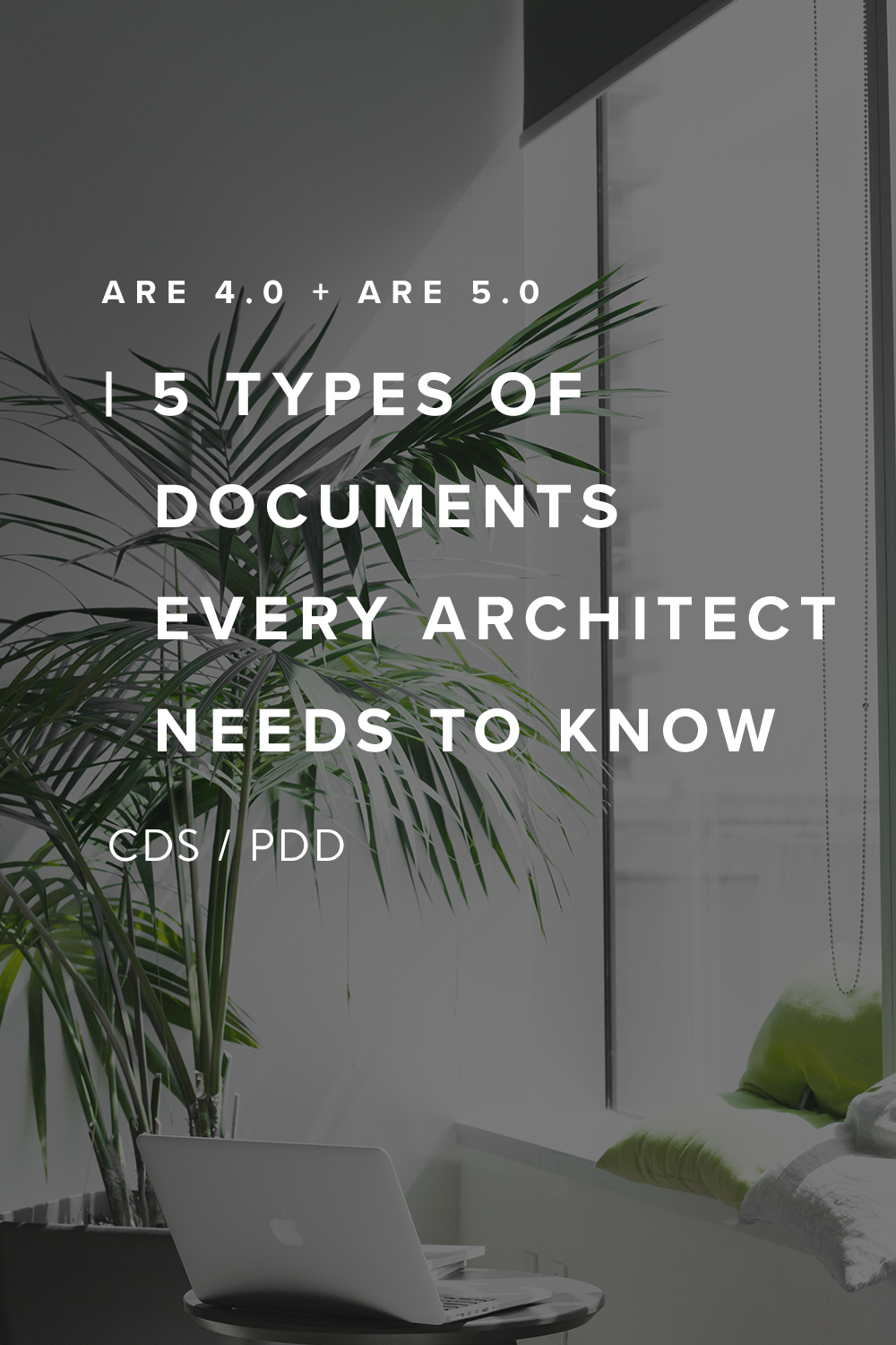 We're going to look into every type of documents you'd need to know for the are 4.0 CDS/are 5.0 PDD exam. You can even download the study guide at the end of the post before your exam! Read more on the Millennial Architect Blog. |  Joann lui