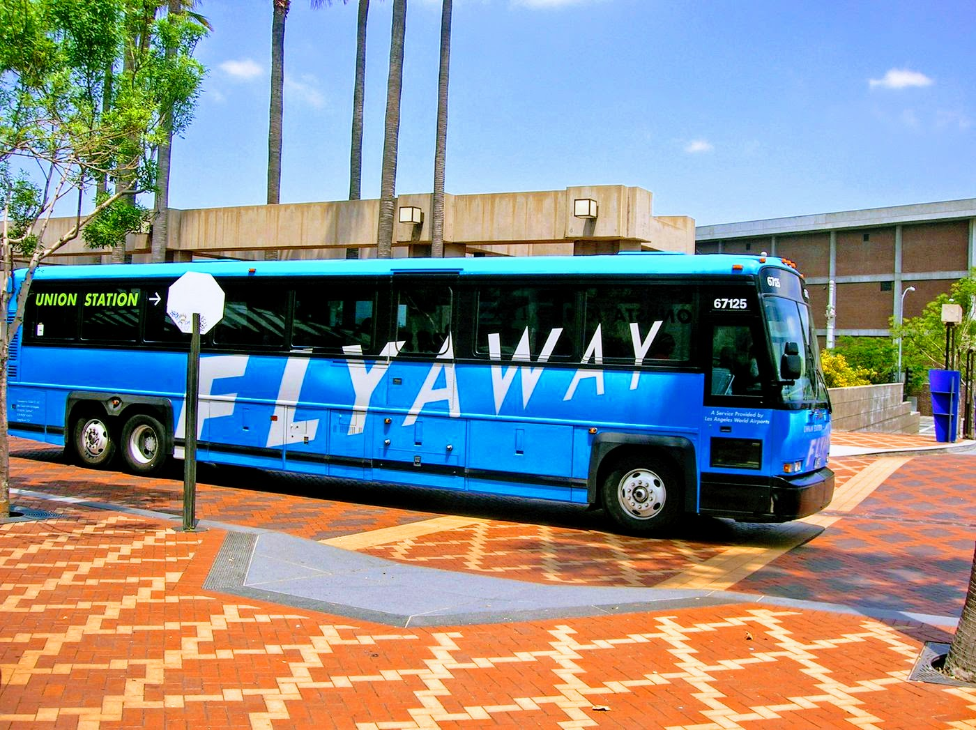 flyaway 2.jpg