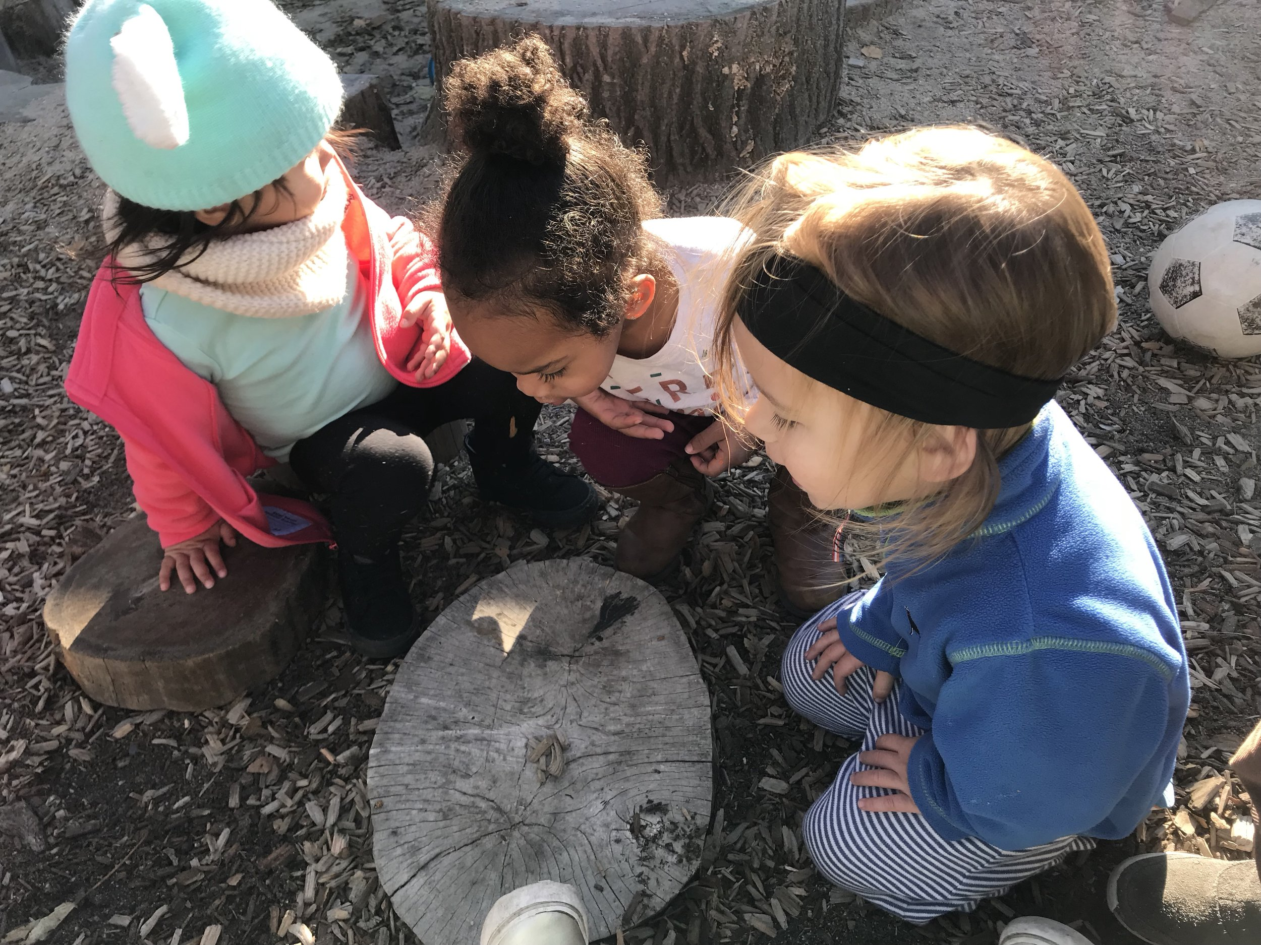 mcs ri toddlers exploring the outdoor classroom