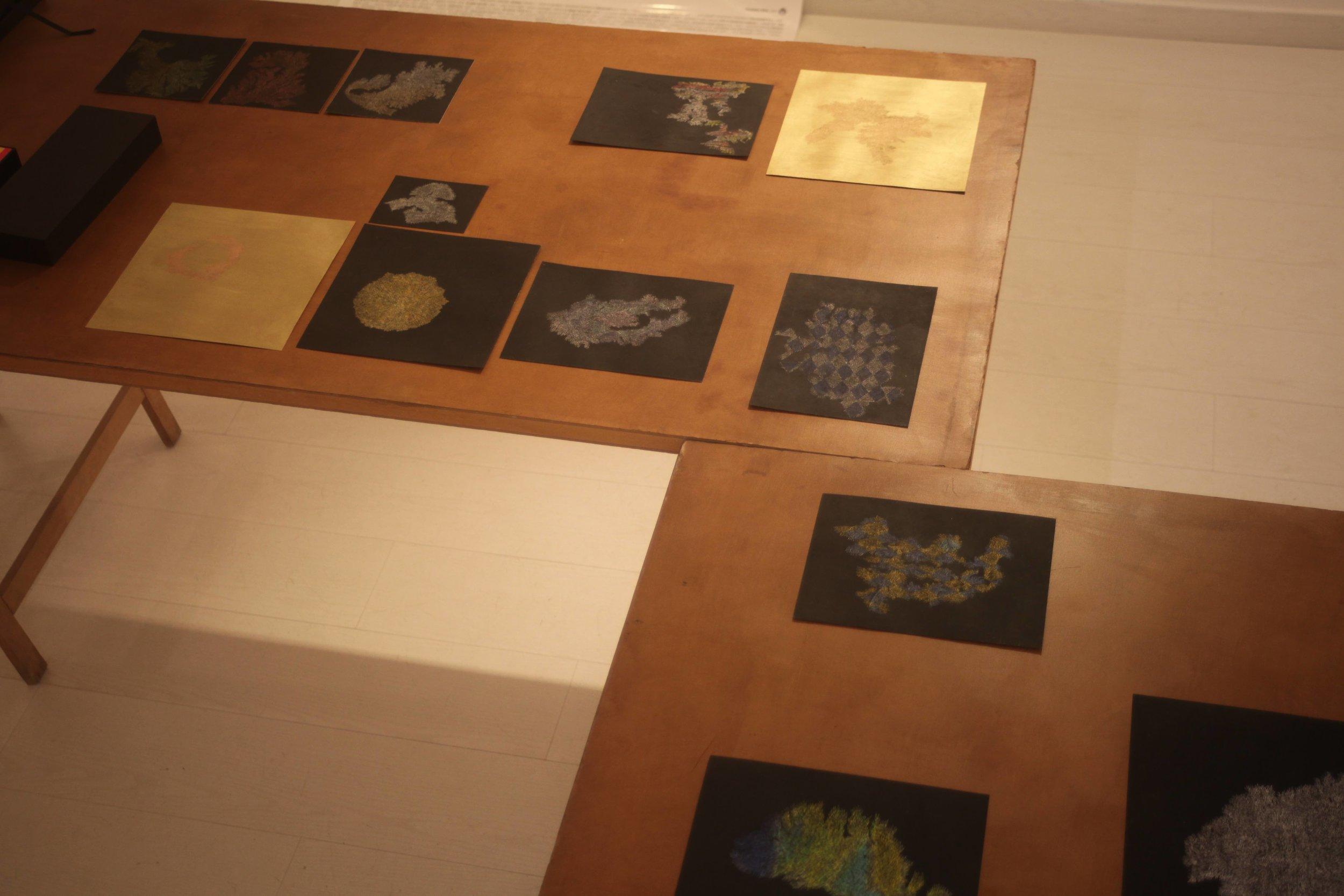 Pastels on Paper ,  Oil on Needle , 2017 Installation View during  Quelque chose comme le dessin  at L'Entrepôt Daniel Boeri Gallery, Monaco, MC.