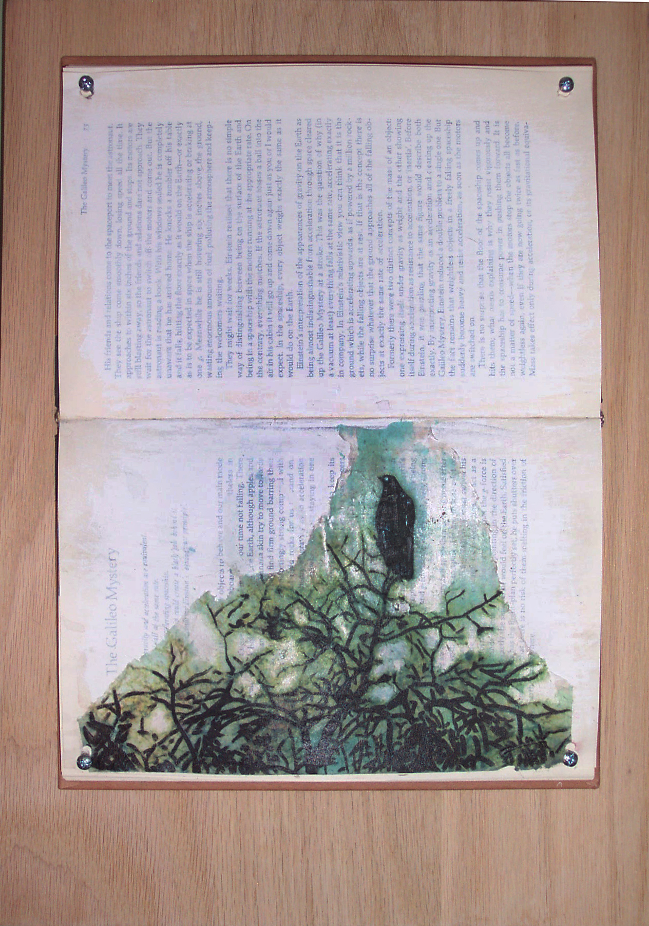 As the Crow Flies (pt. 1). 2008. Altered book, transfer print, gesso, screws, oak. -