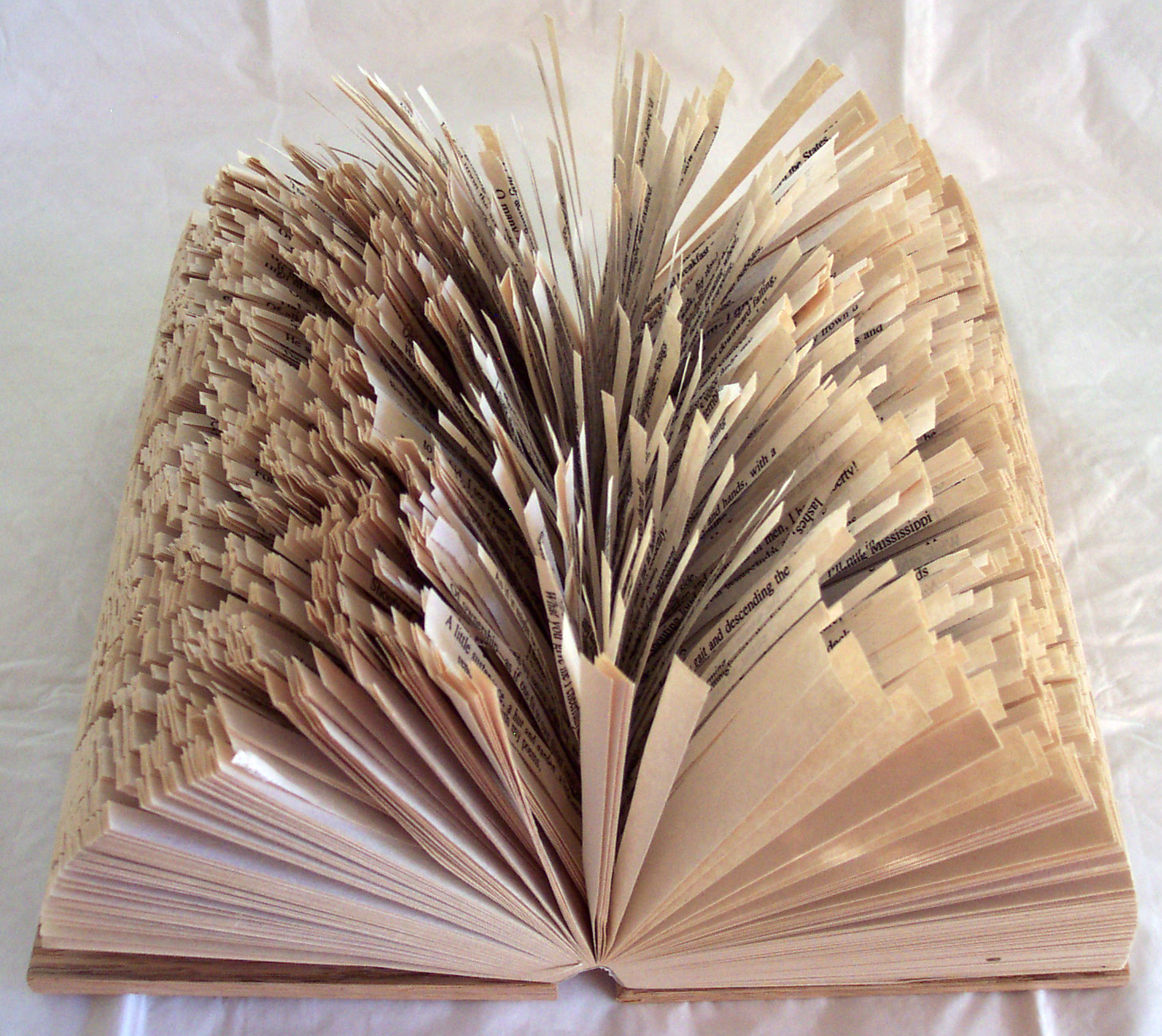 Leaves of Grass. 2008. Altered book. -