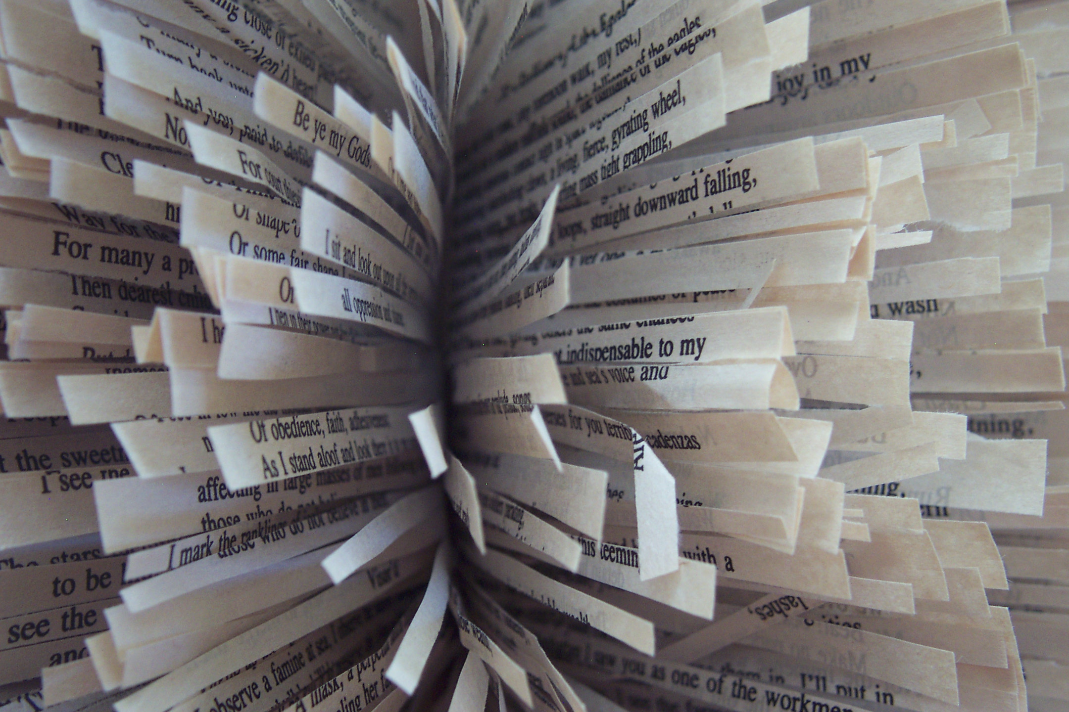 Leaves of Grass (detail). 2008. Altered book. -