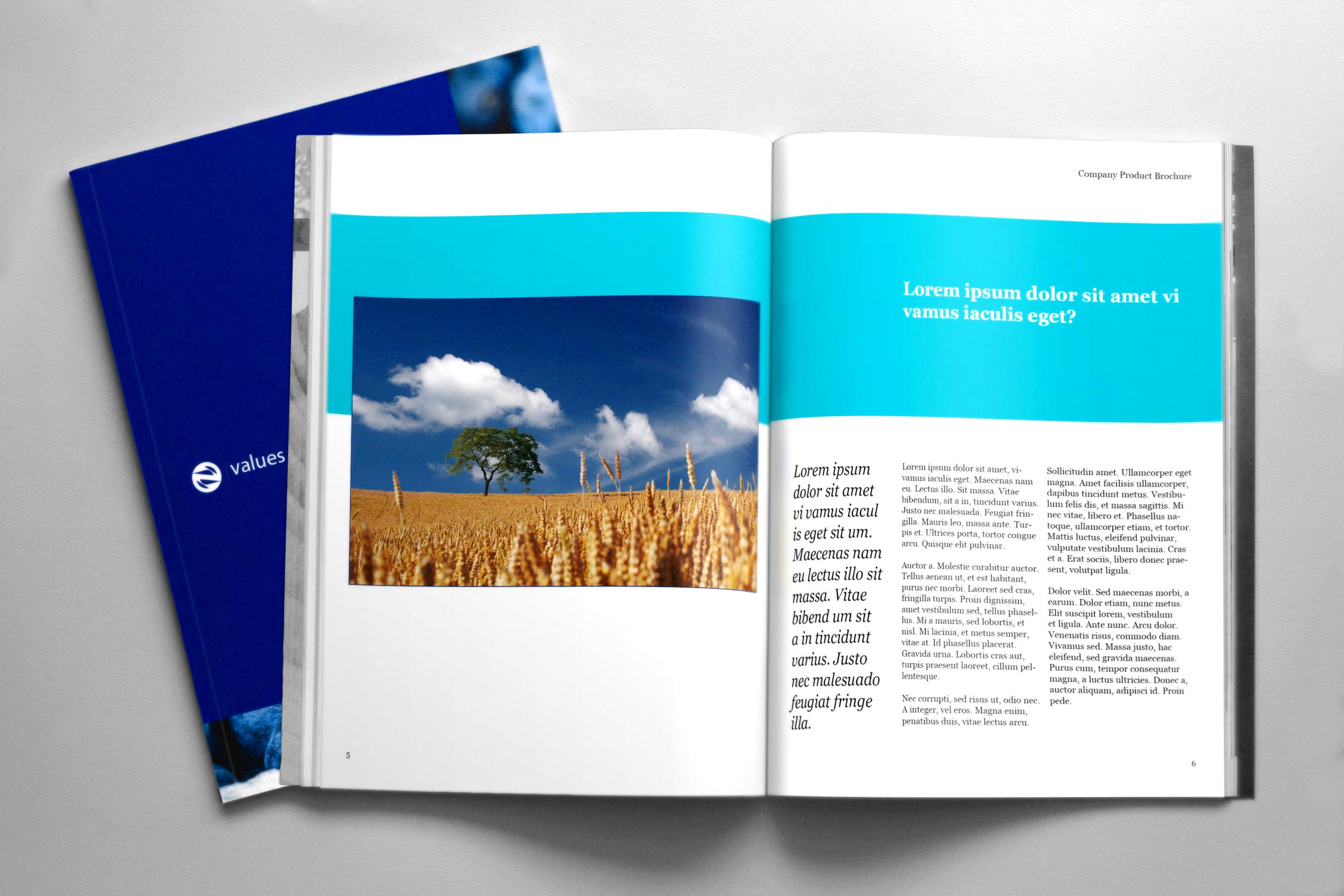 Brochure-3.png