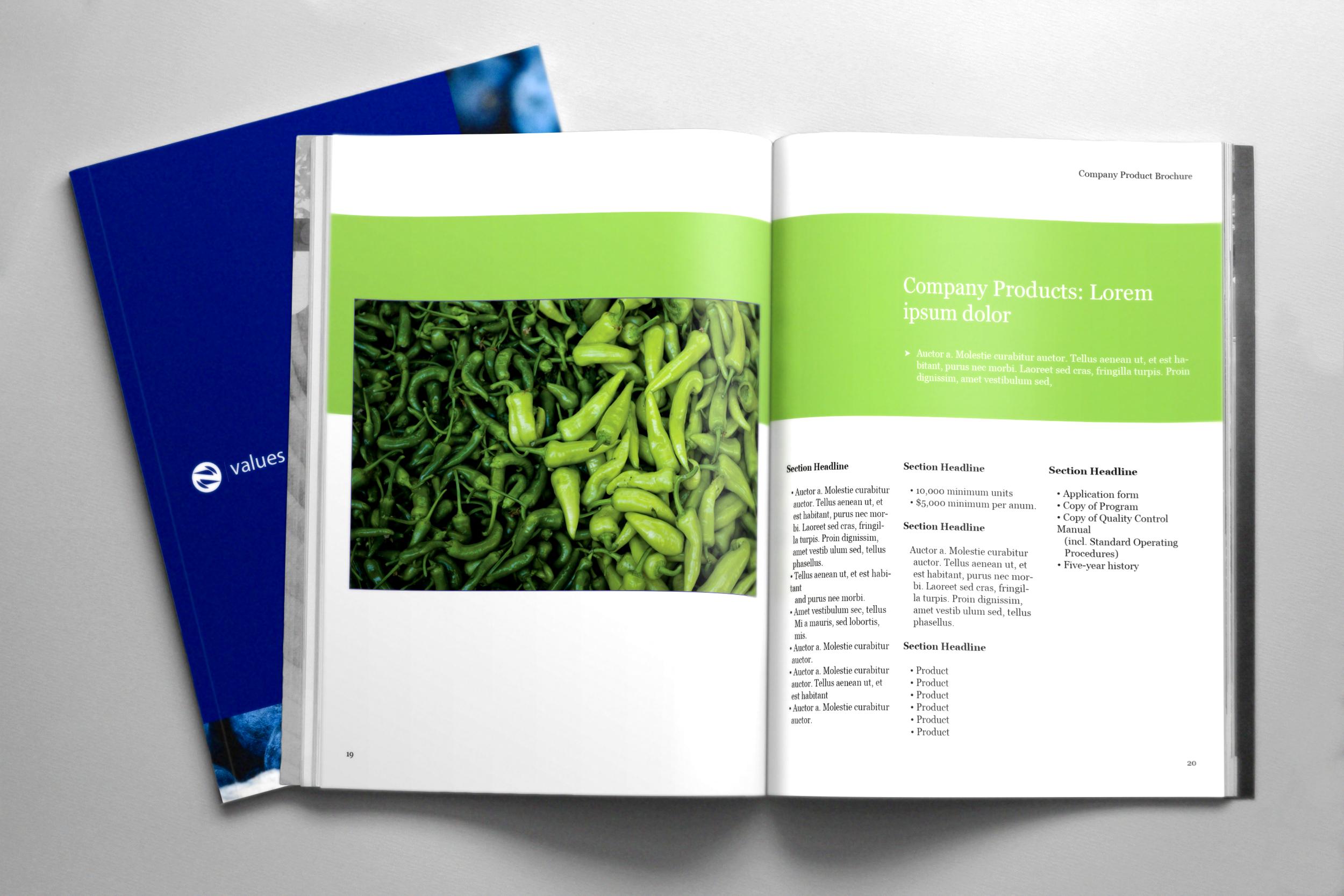 Brochure-10.png