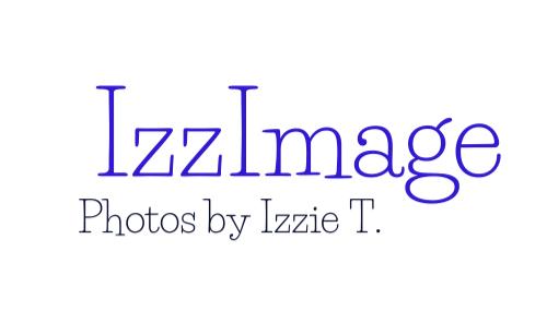 IzzImage -logo.png