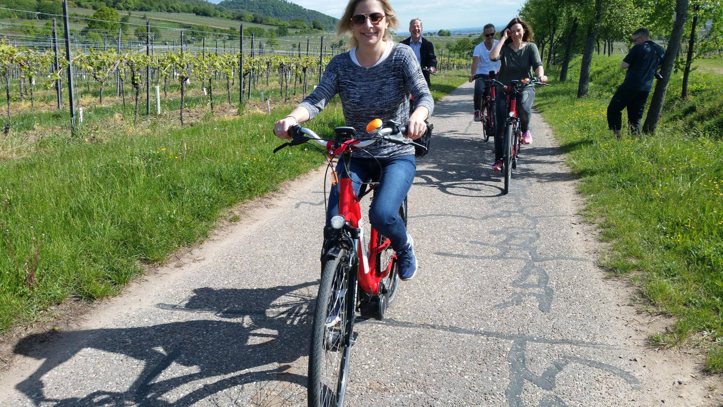 E-bike riding through the vineyards of German's Pfalz region.