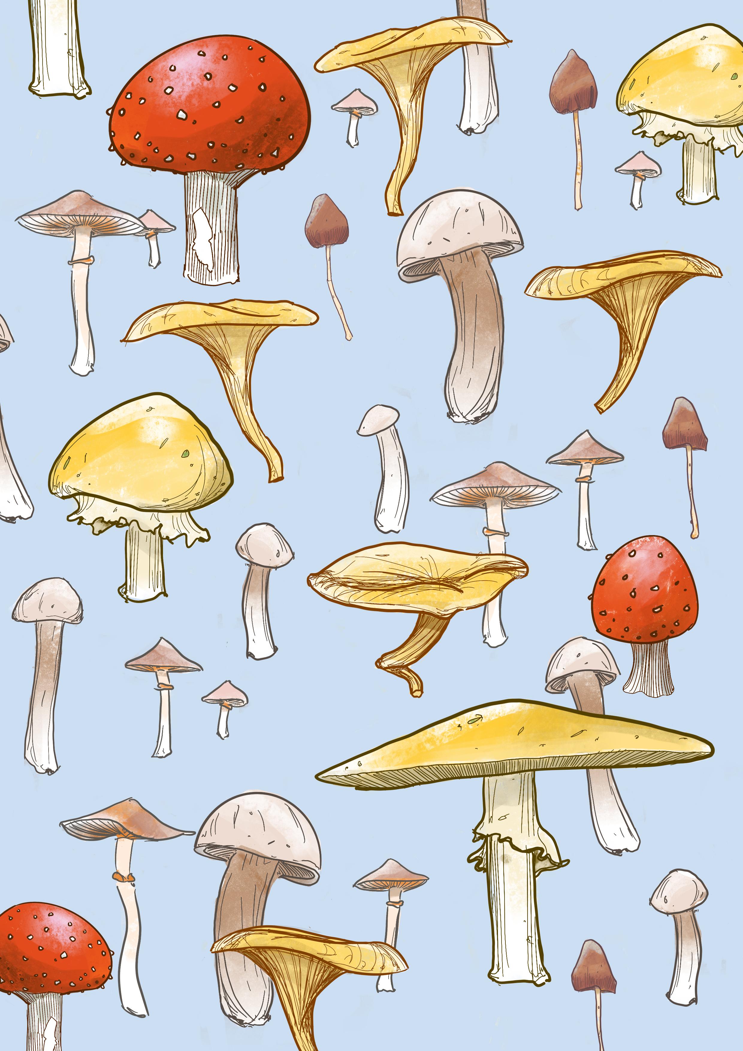 Composite Mushroom.jpg