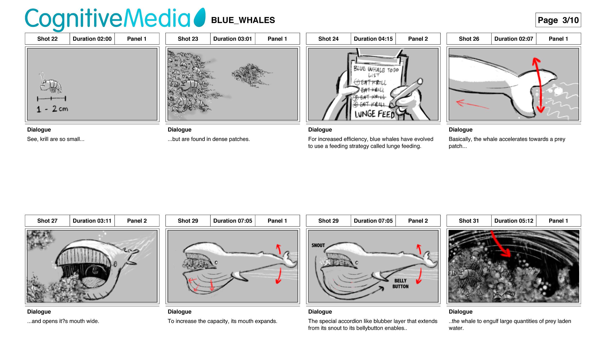 TED-asha-devos-blue-whales-cognitive-1.jpg