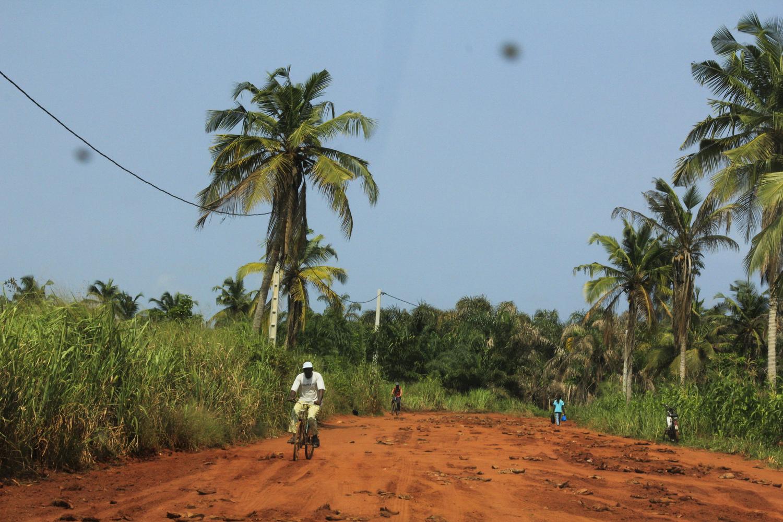 _Côte d'Ivoire_Kew_126.CR2 copy.jpg