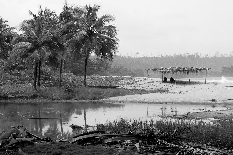 _Côte d'Ivoire_Kew_2634.CR2 copy-2.jpg
