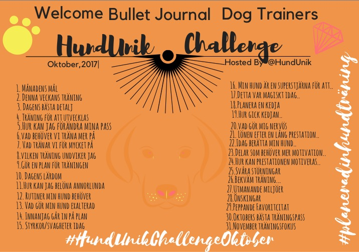 HundUnik Challenge Oktober, glöm inte att #: #HundUnikChallengeoktober  #planeradinhundträning