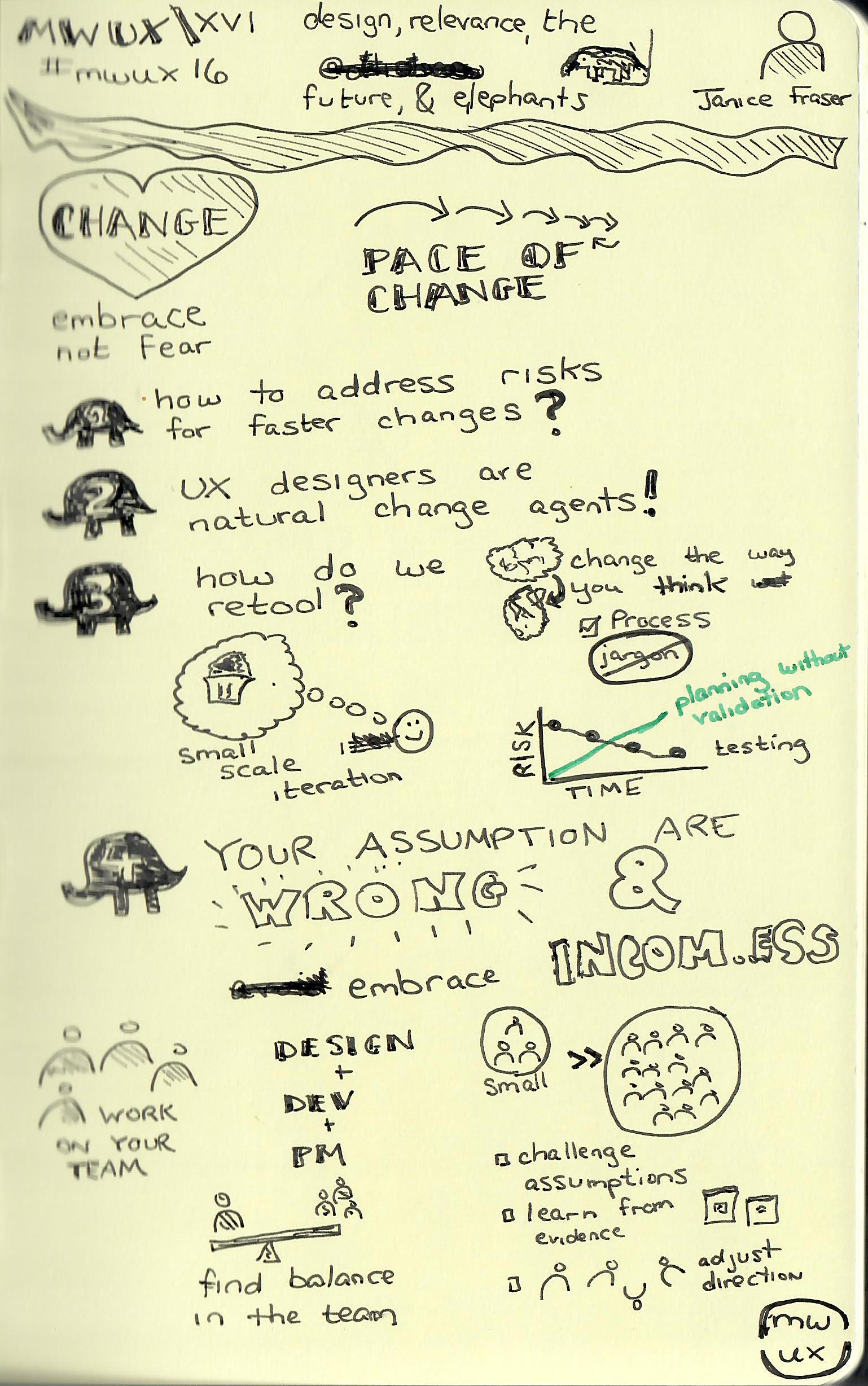 Design Relevance the Future and Elephants (Janice Fraser).jpg
