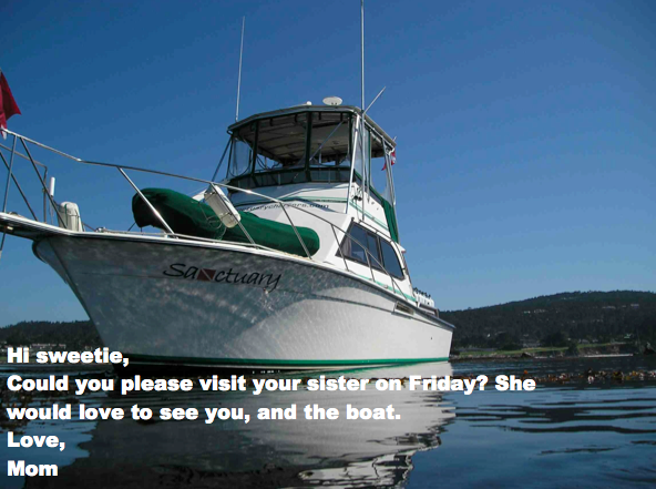 boats1.png