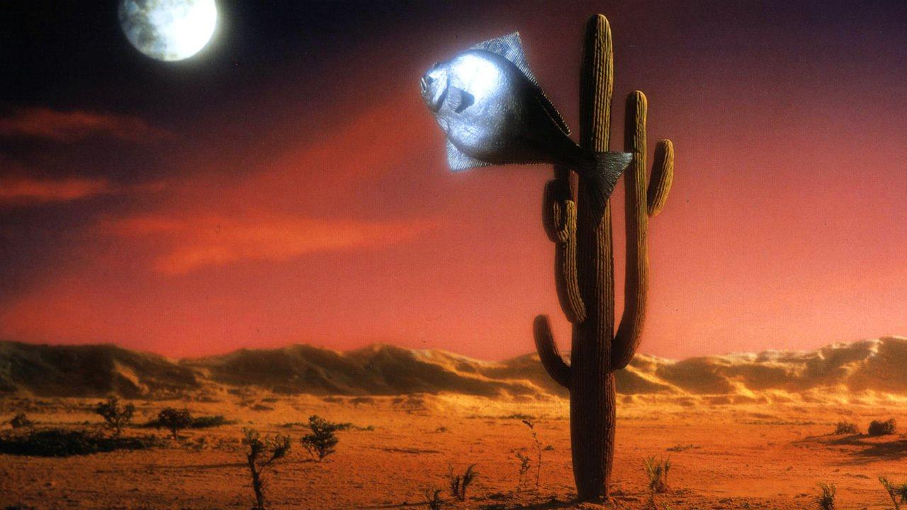 Arizona Dream, 1994, Emir Kusturica