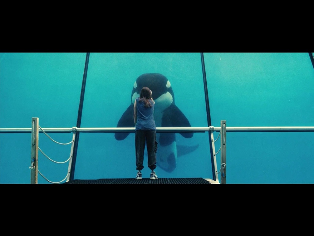 Rust and Bone, 2012, Jacques Audiard