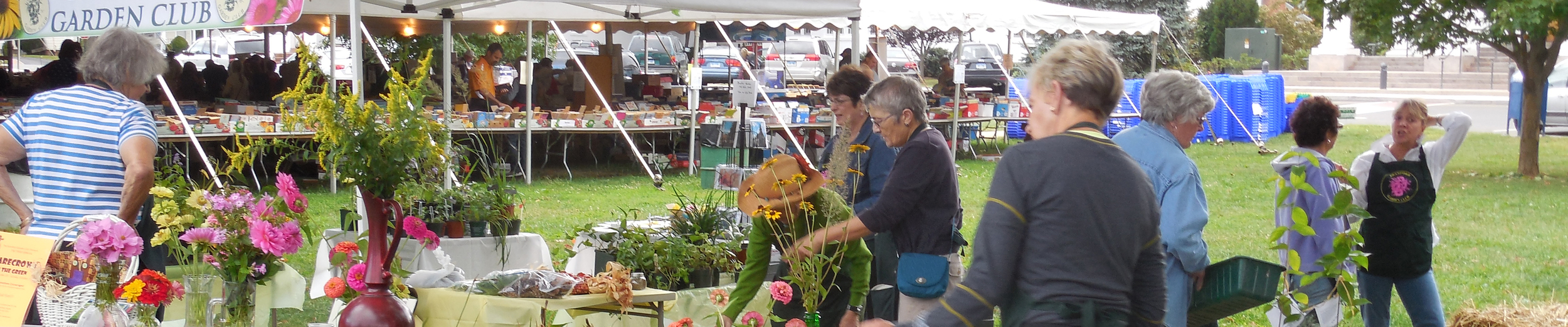 Plant Sale on the Green