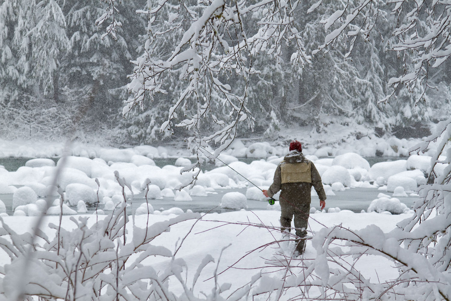 Lifestyle: Chris Solomon works his way through the snow to fly fish in the snow, South Fork of the Stillaguamish River, Central Cascades