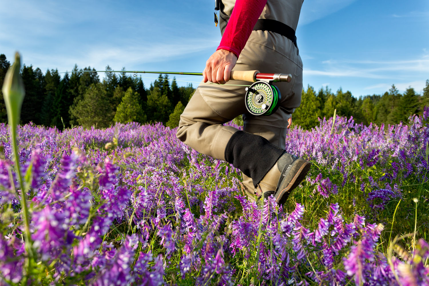 Lifestyle: Kathleen Hasenoehrl walking through a field of wildflowers on her way to fly fish the Yakima River at sunset, Central Cascades, Washington