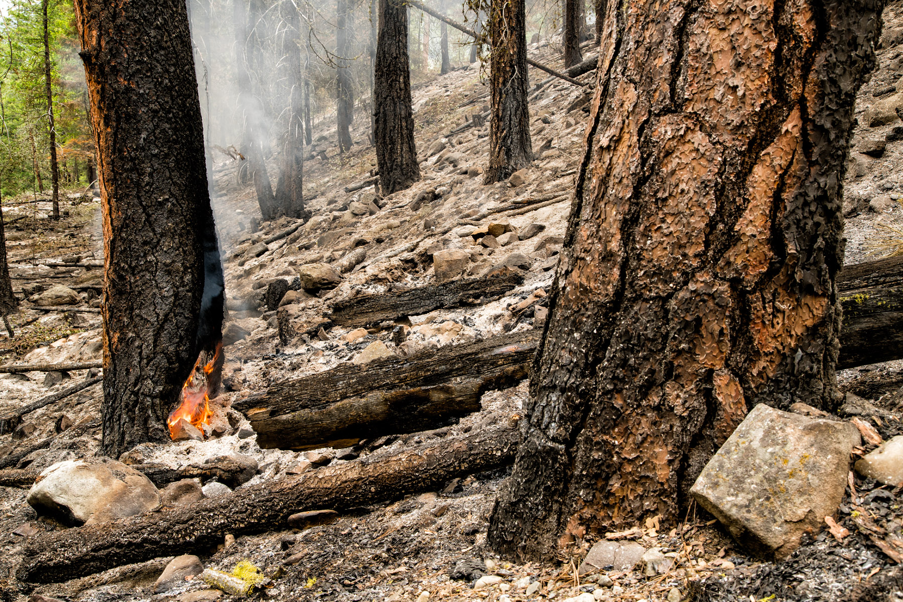 Conservation: A prescribed burn smolders in the Methow Valley, Washington