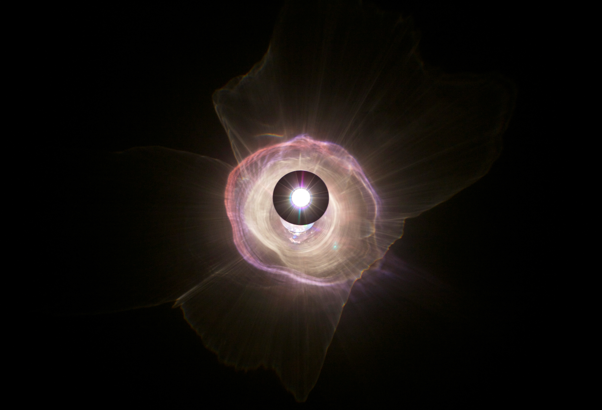An Exploding Star is an Inverted Eye, 2014