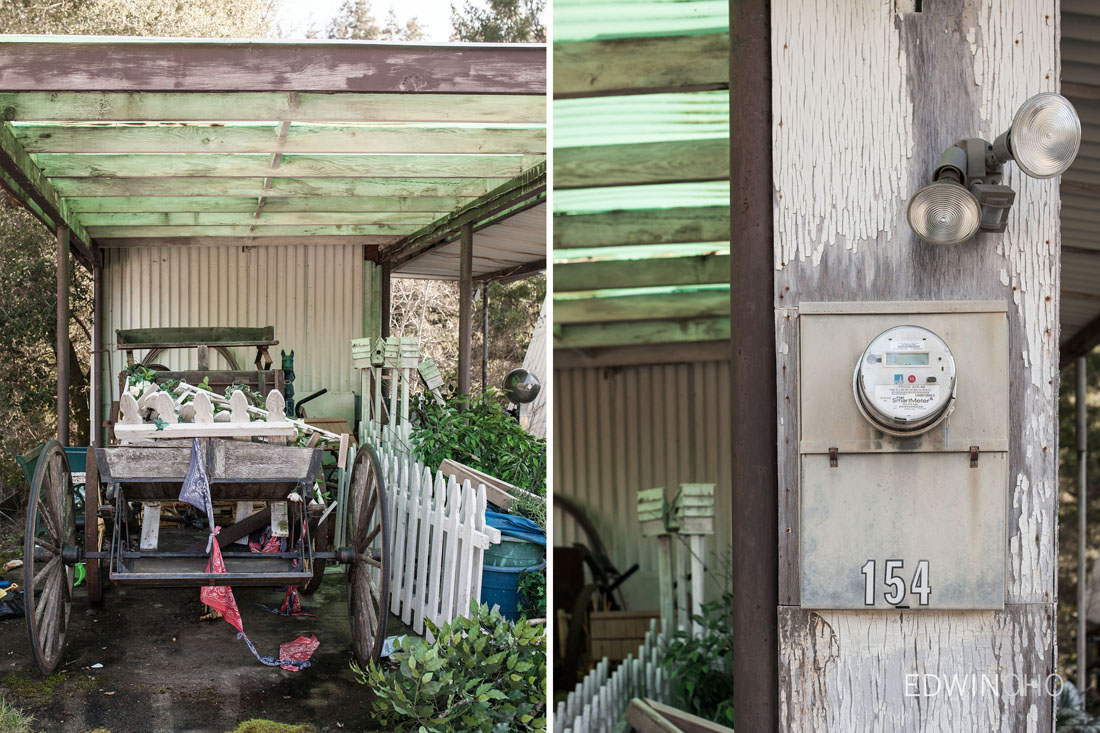 Shed Dipdych