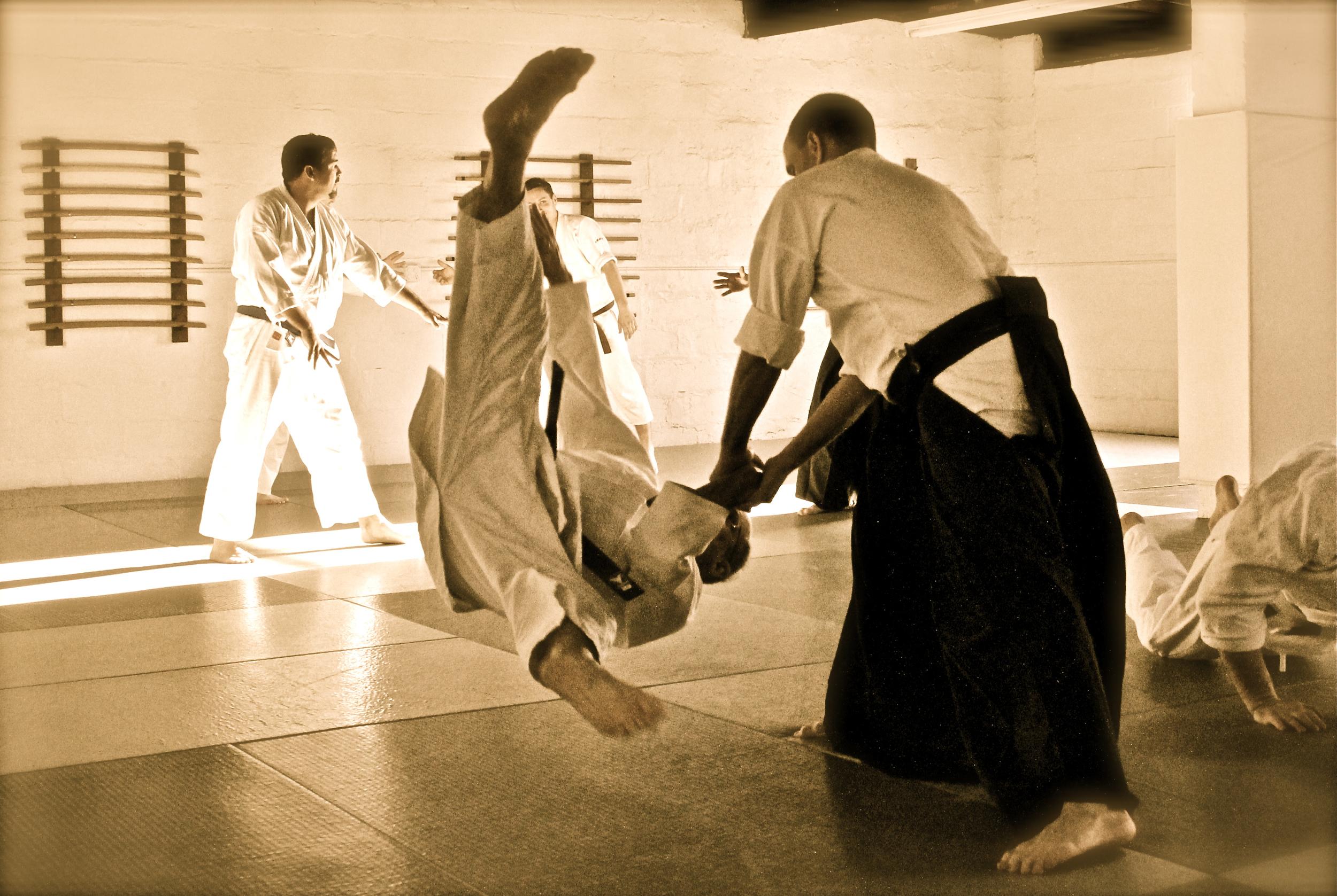 aikido (69).jpg