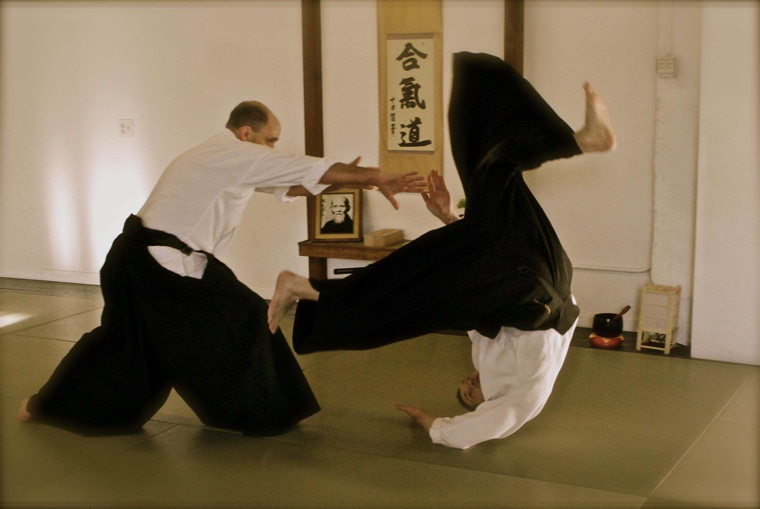 aikido (255).jpg